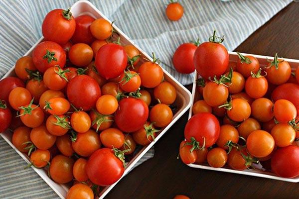 bảo quản cà chua