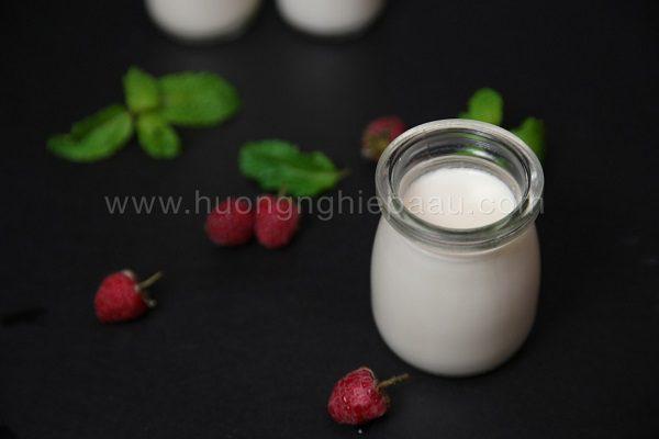 hinh anh yogurt