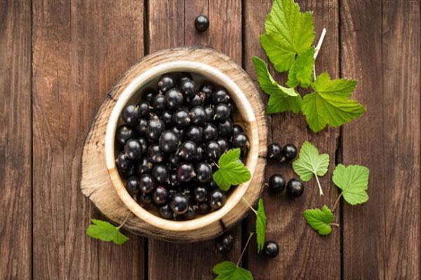 Những thực phẩm màu đen tốt như nhân sâm